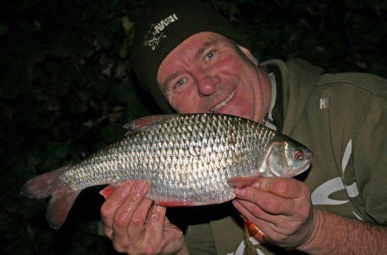 Рыба плотва: фото и описание, секреты ловли | клёвая рыбалка