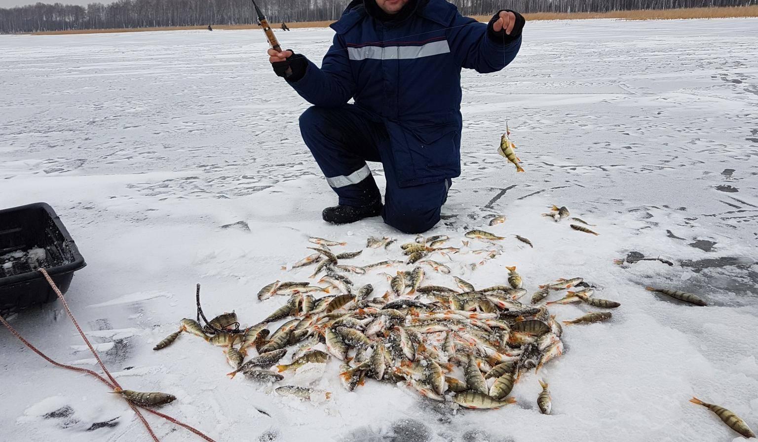 Рыбалка в челябинске и челябинской области — где ловить, на что лучше клюет