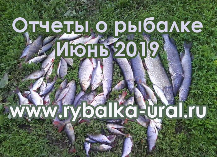 Рыбалка в республике башкортостан. отчеты. форум