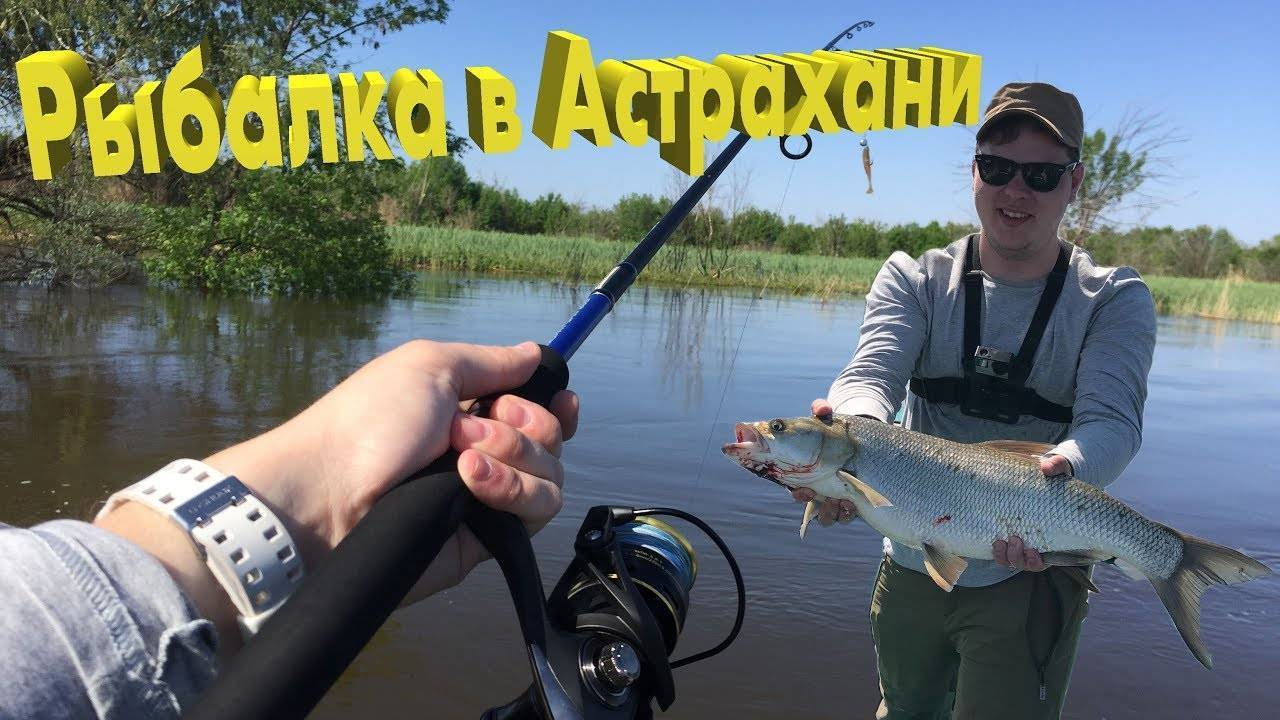 Рыболовные базы в астраханской области