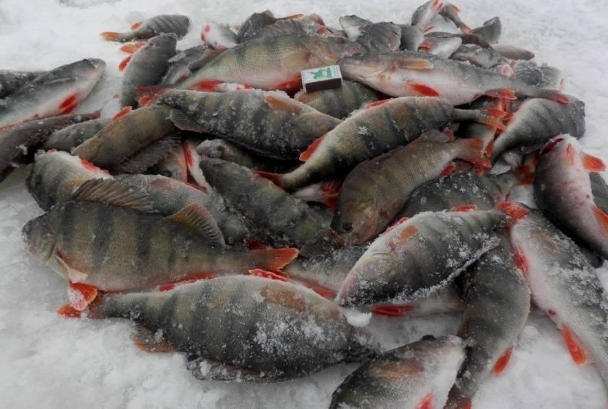 Рыбалка в башкирии | (02) карта рыболовных мест