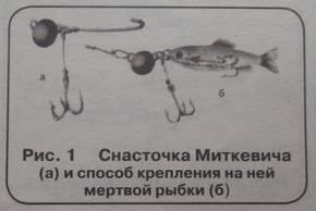 Где можно искать и ловить щуку осенью: особенности рыбалки в разных условиях