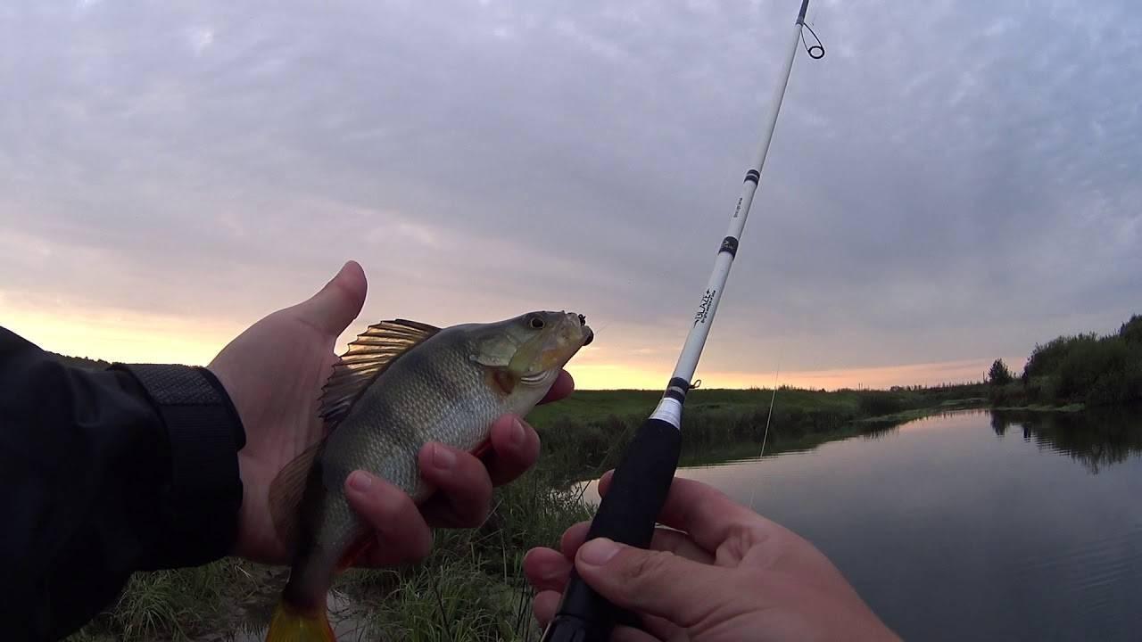 Как микроджигиты отправились нарыбалку
