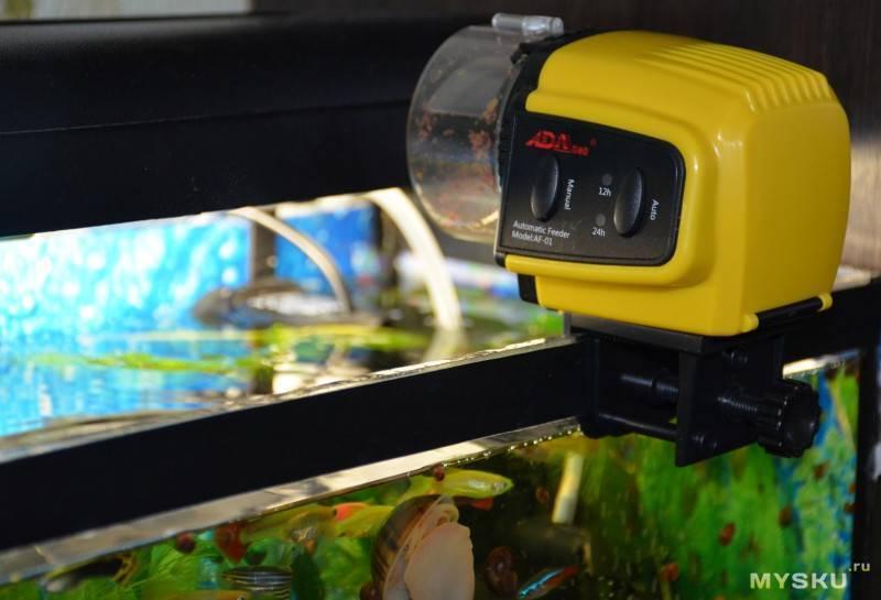 Как выбрать автокормушку для аквариума?