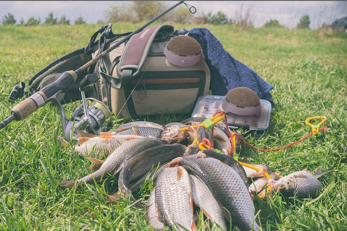 Хитрости для летней рыбалки, с которыми ловить одно удовольствие