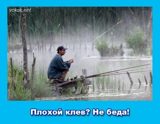 Лучшая по года для ловли зимой и летом