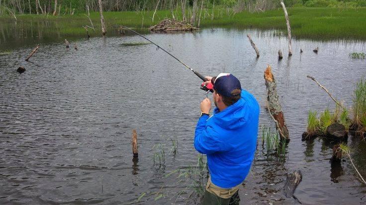 Места для рыбалки в псковской области – платная и бесплатная рыбалка!