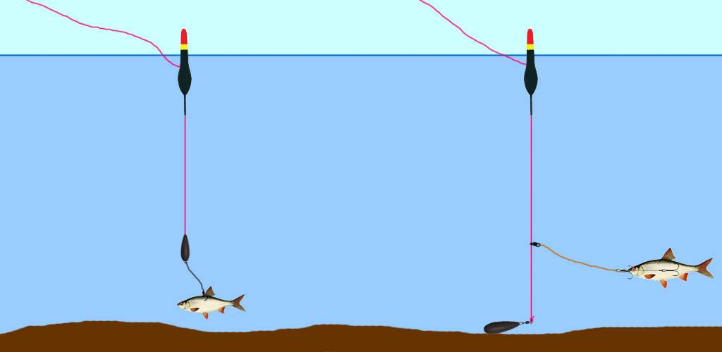 Ловля щуки на поплавочную удочку: тонкости применения снасти.