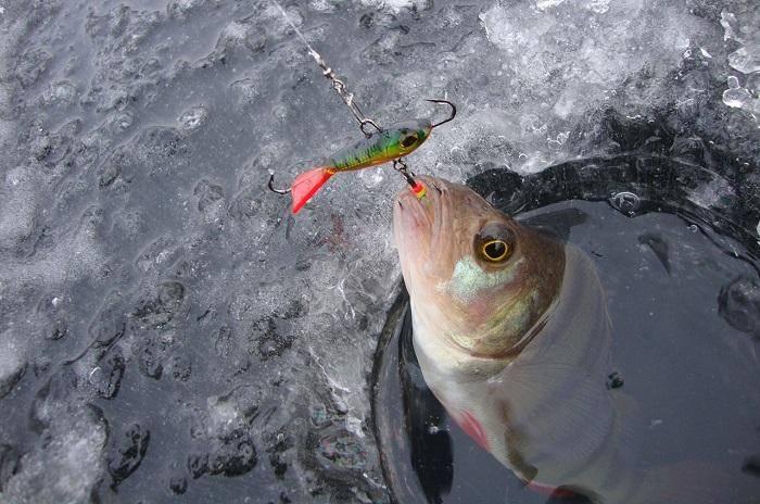 Рыболовная снасть бокоплав: приманка на судака и других хищных рыб, изготовление своими руками