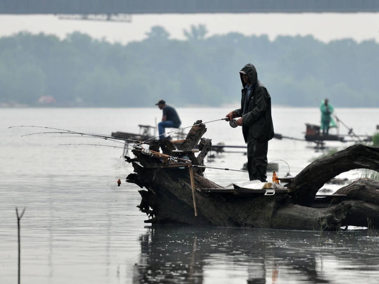 Рыбалка в дождливую погоду