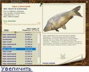 Рыба карп - 78 фото всеядной полезной и крайне вкусной рыбы