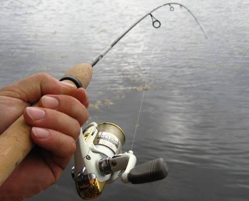 Чем обработать леску чтобы она тонула - рыбалка