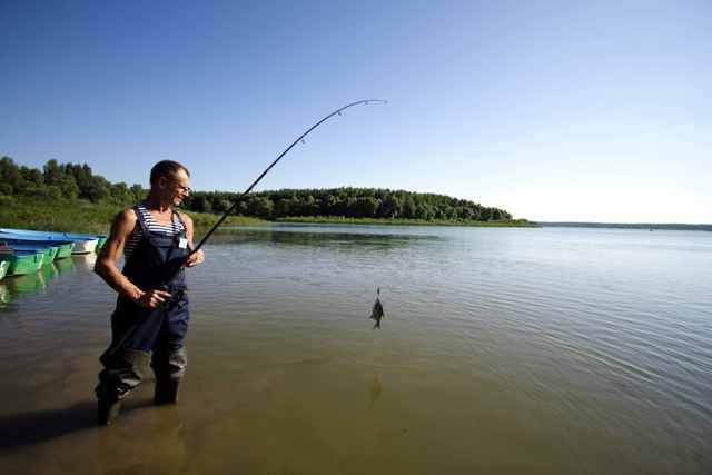 Можайское водохранилище: виды рыбы, снасти для рыбалки, места с хорошим клёвом
