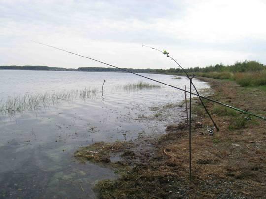 Рыбалка в свердловской области - лучшие места и отчеты о рыбалке