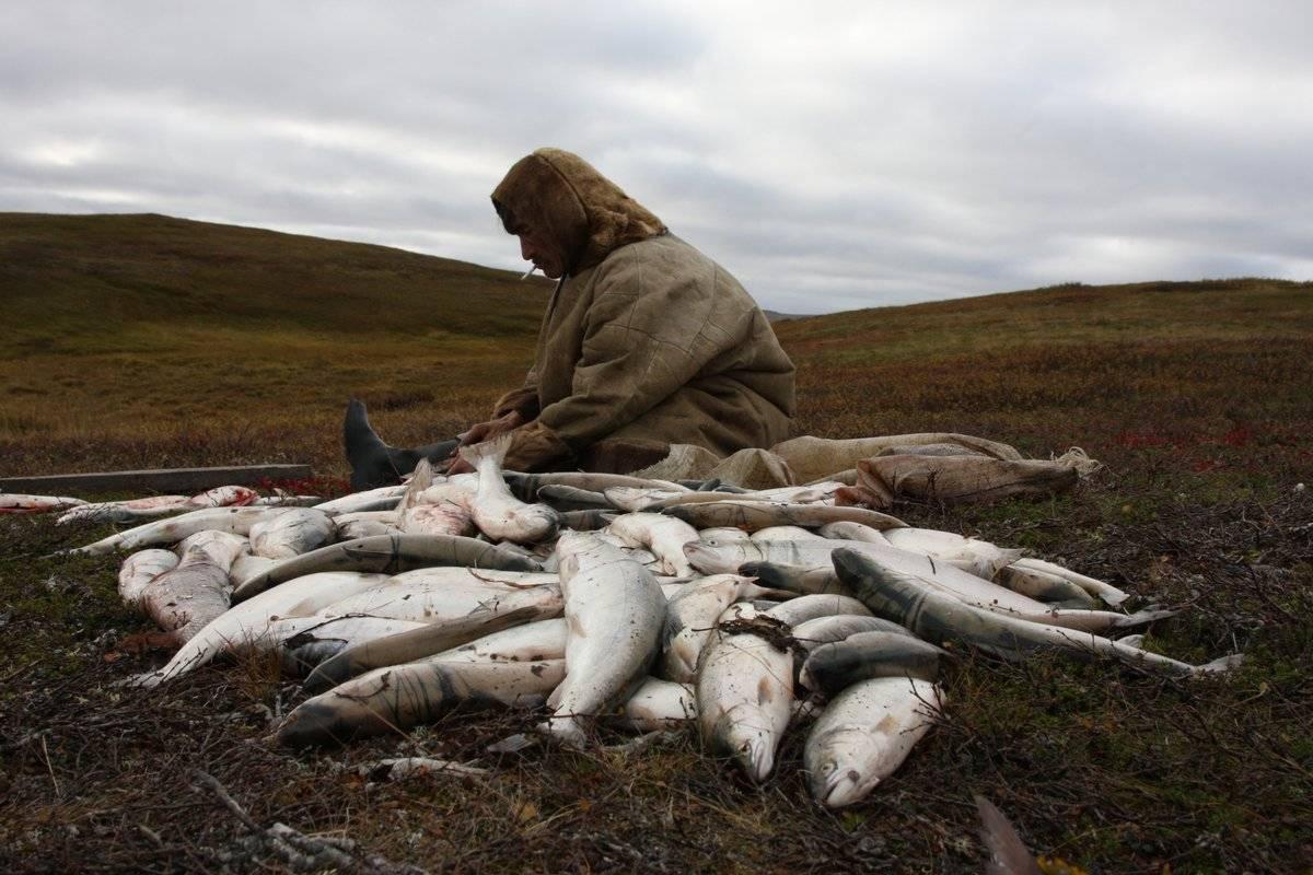 Места для рыбалки в республике татарстан – платная и бесплатная рыбалка!