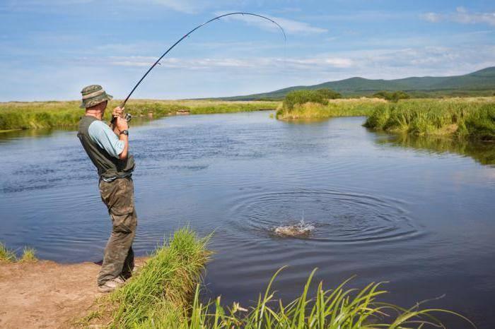 Рыбалка в челябинской области: как ловить, популярные места