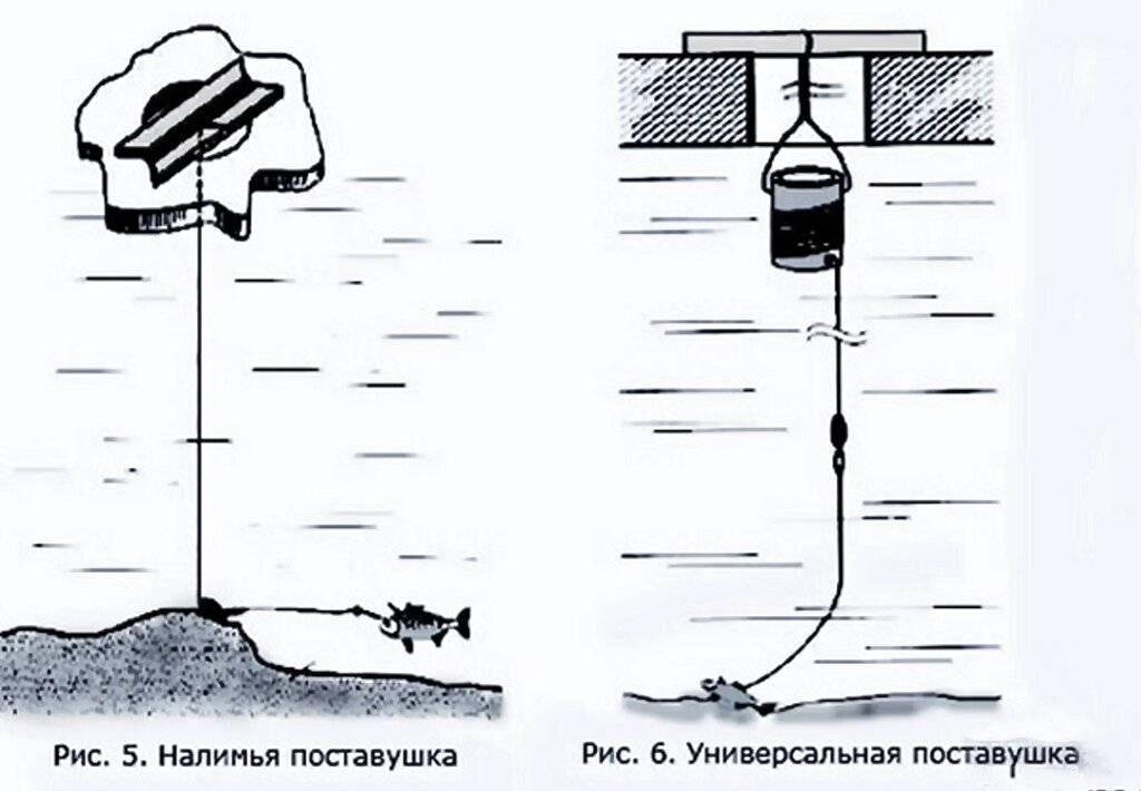 Жерлицы на щуку летом – инструкция по изготовлению снасти и ловле хищницы