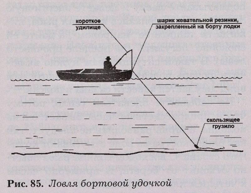 Оснастка на леща - фидерная, поплавочная, бортовая и донная удочка