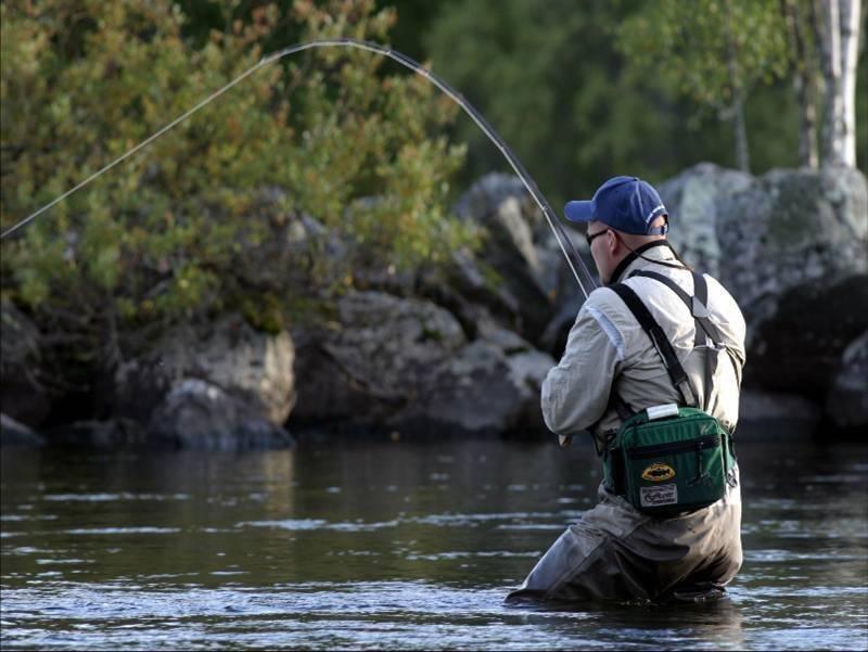 10 лучших платных прудов для рыбалки в подмосковье – рейтинг 2020