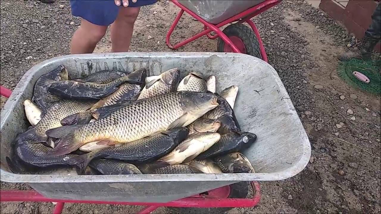 Топ-10 мест для рыбалки в россии
