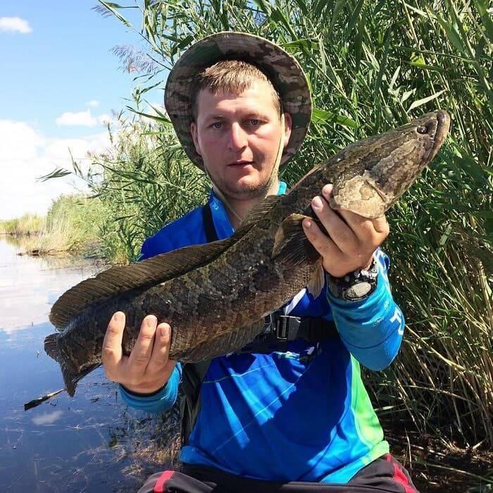 Где порыбачить в новосибирске: платные водоемы, карта рыбалки