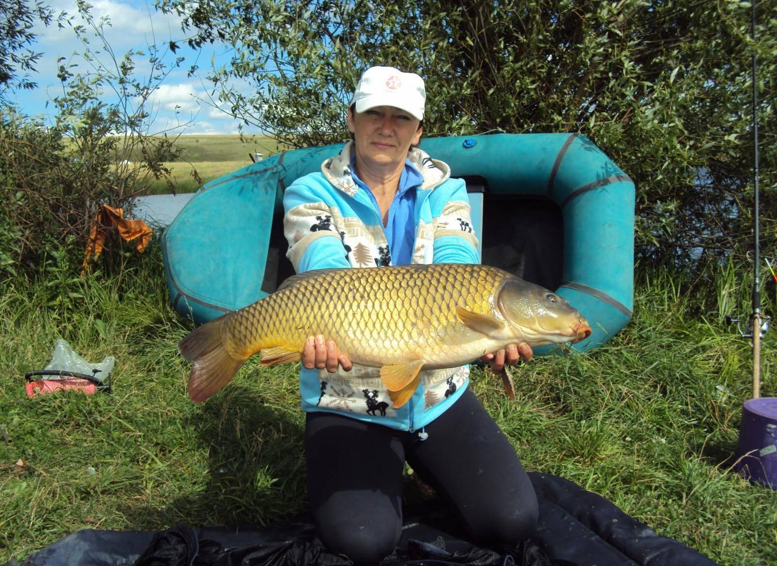 Рыбалка в пензенской области. отчеты рыбаков на форуме