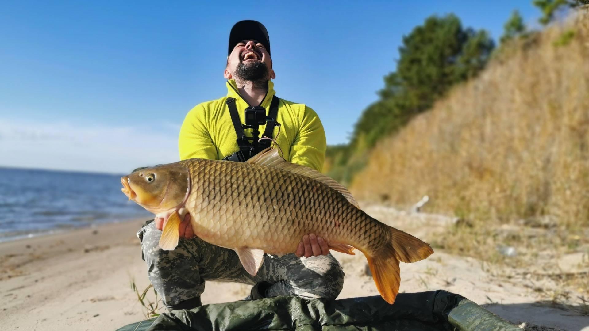 Трофейная рыбалка сазана в поймах волги, ахтубы и митинки на рыболовной базе пристань рыбака, расположенной близ харабали и астрахани, 8 (800) 555-45-44
