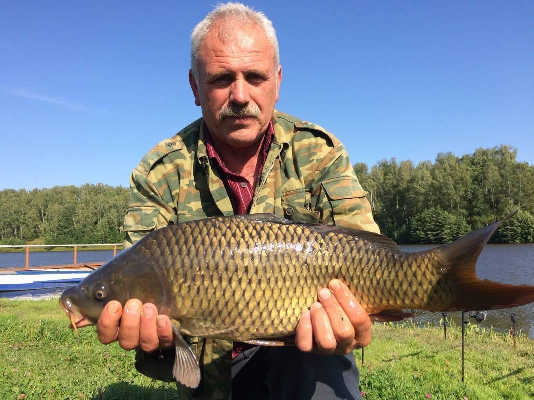 ✅ лаишевка ульяновск рыбалка - danafish.ru