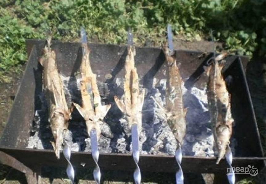 Шашлык из осетрины: рецепты, как приготовить осетра на решетке на мангале