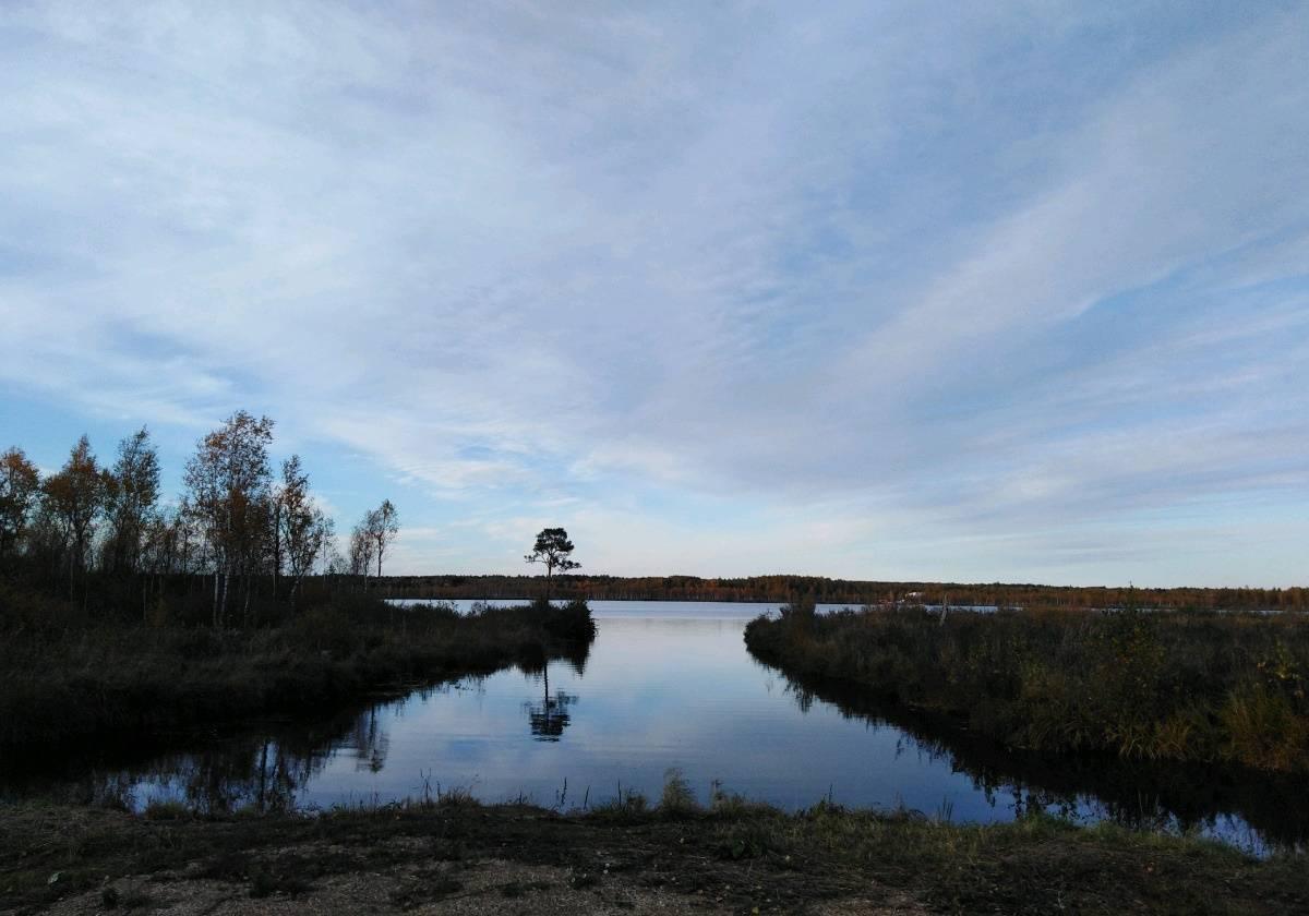 Рыбалка на плещеевом озере: платная и бесплатная