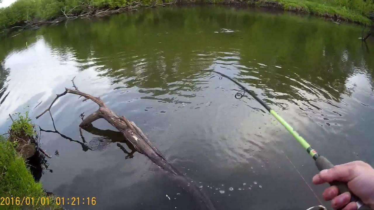 Всесезонная рыбалка в липецкой области