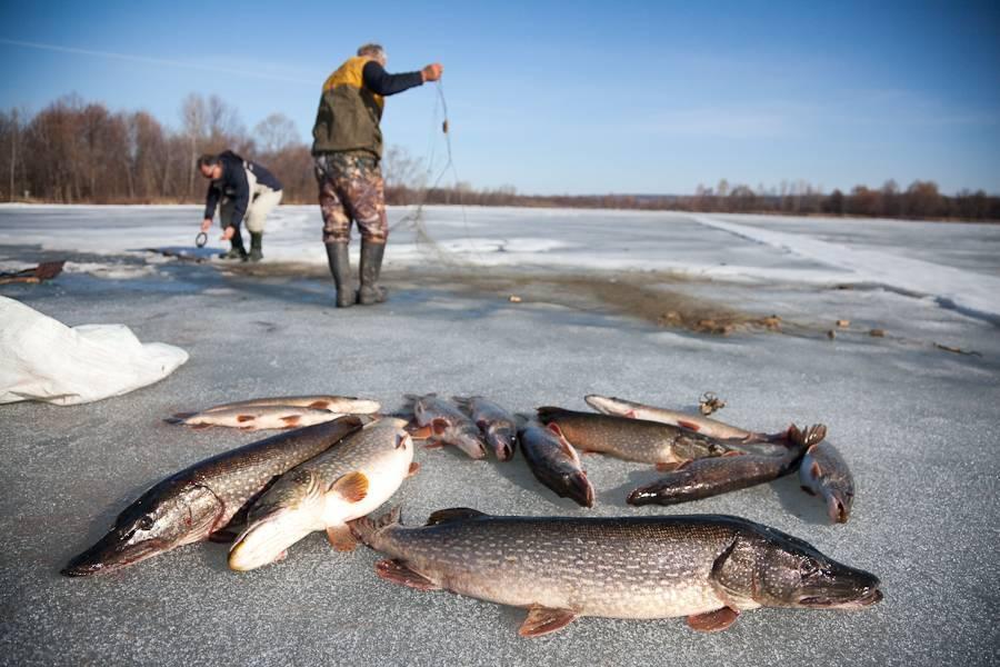 Рыбалка в сахалинской области: лучшие места на карте топ-3