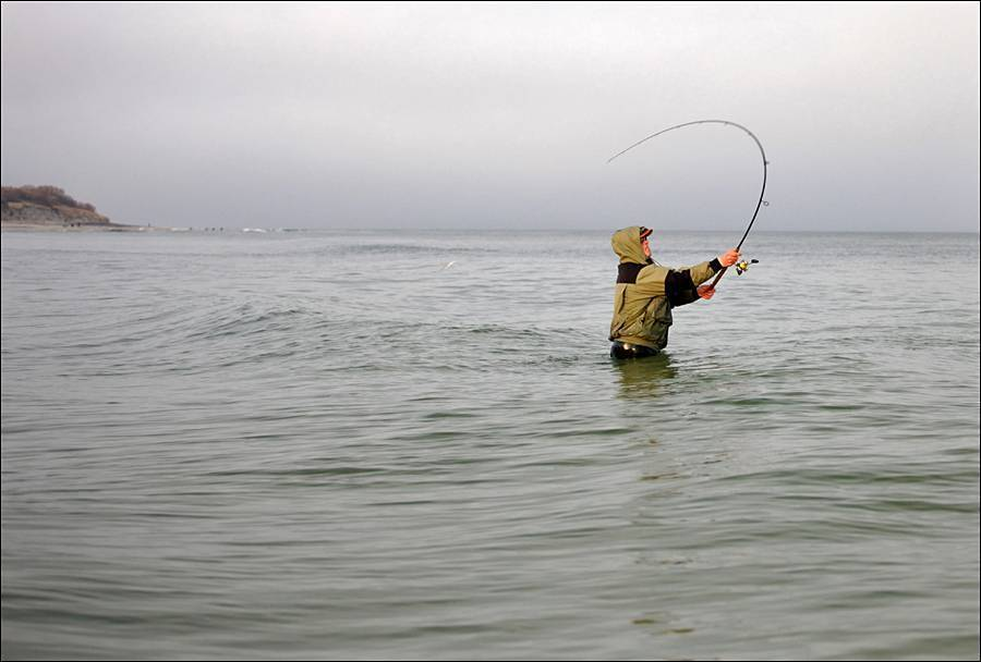Геленджик - календарь рыболова. рыбалка в геленджике, график клёва рыбы.