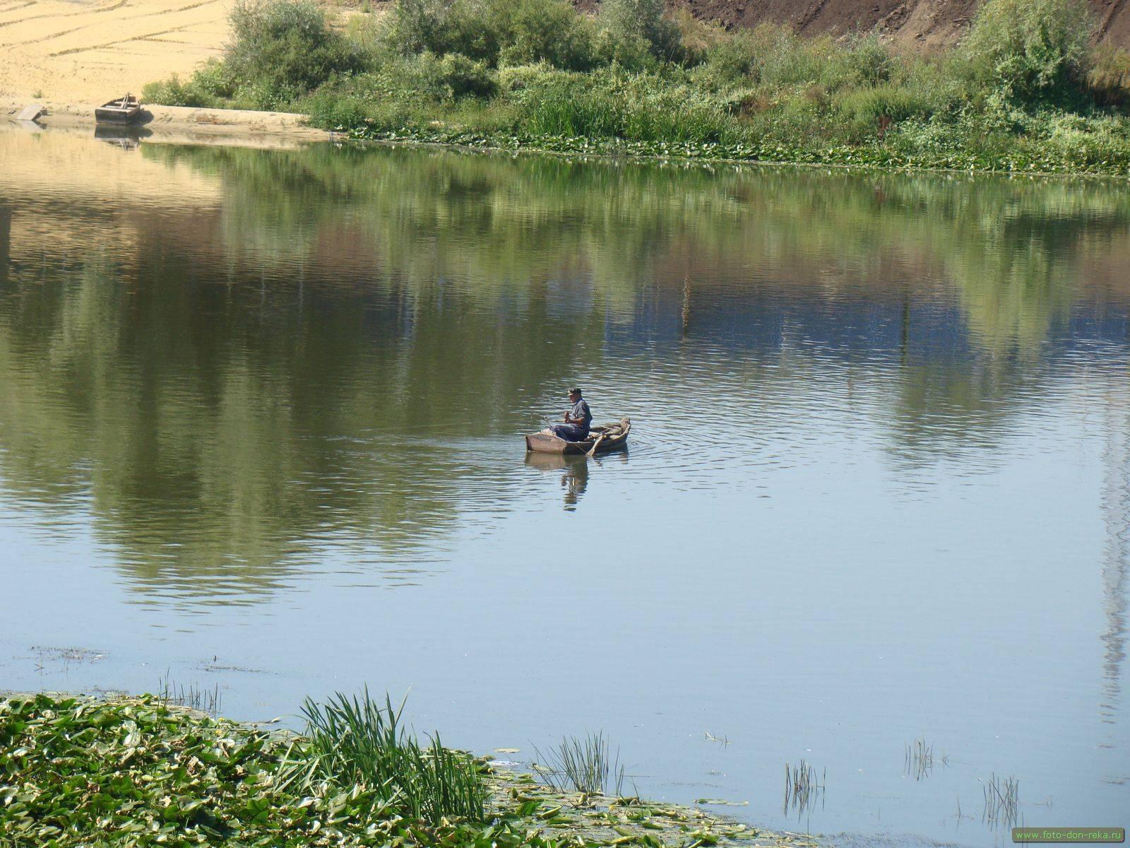 Рыболовные базы в ростове-на-дону и ростовской области: отдых с рыбалкой на маныче, другие недорогие турбазы с домиками