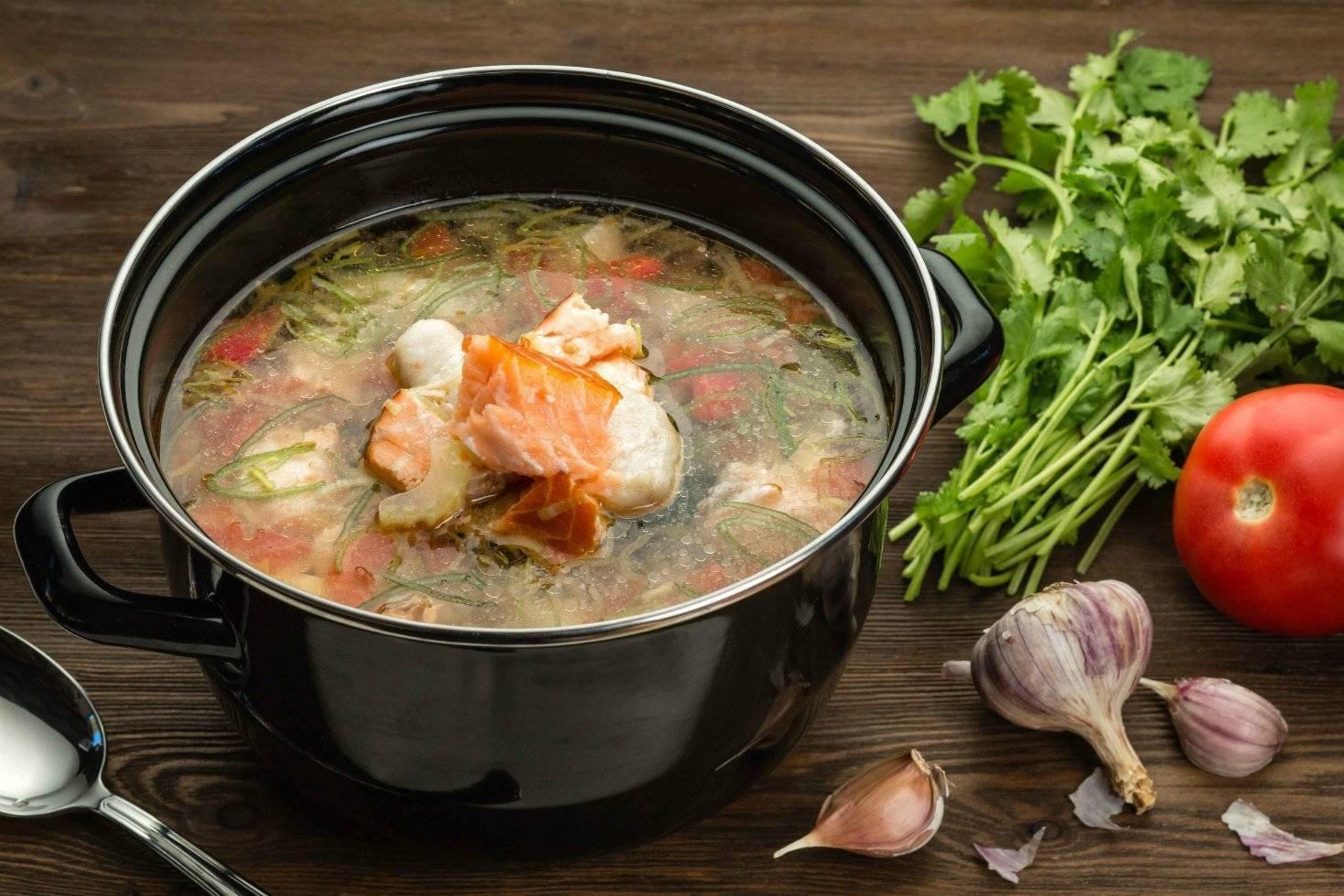 Уха по-фински со сливками - пошаговые рецепты приготовления из семги, форели или плавленным сыром