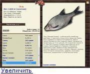 Синец: описание рыбы, места обитания, нерест, способы ловли, образ жизни и гастрономическая ценность