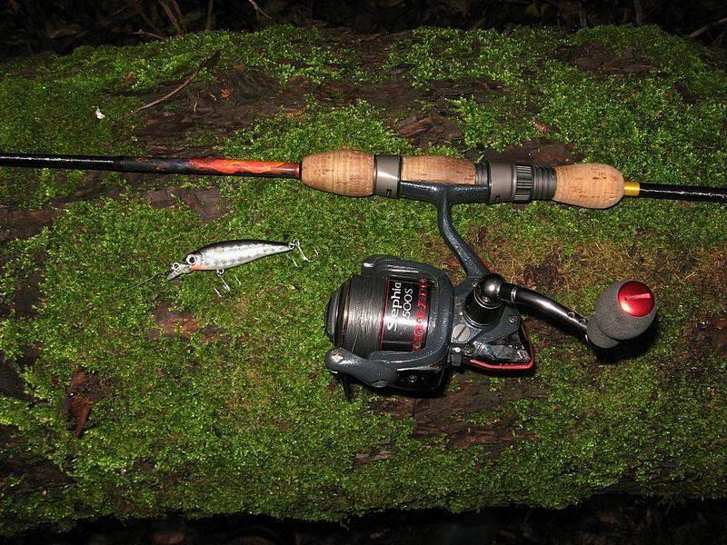 Твичинг – техника ловли и ключевые нюансы
