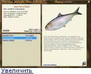 =список всех аквариумных рыбок=
