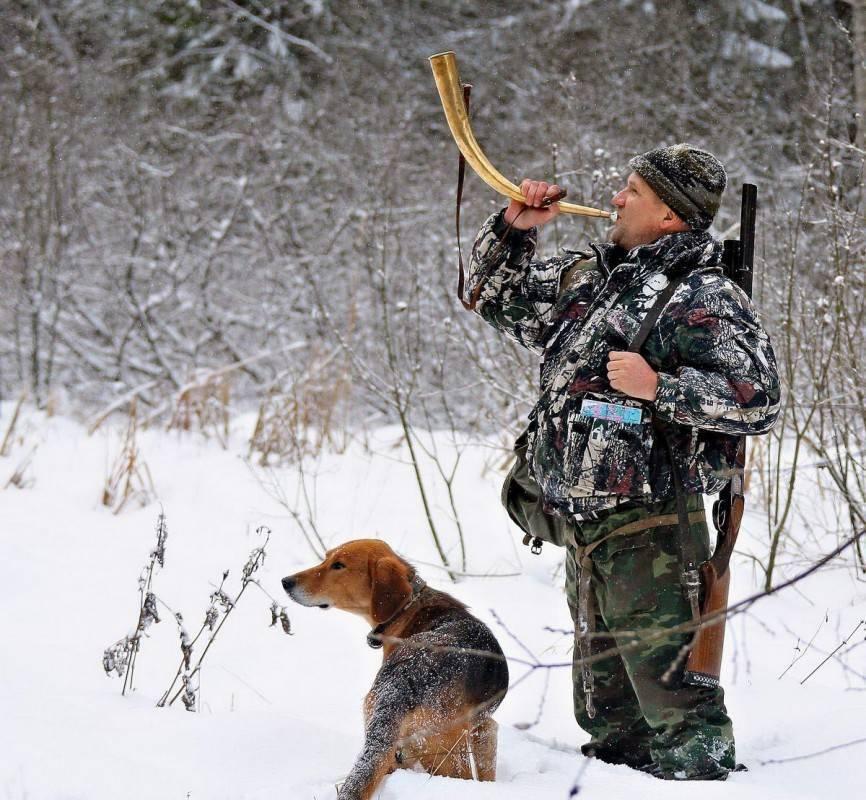 Охота для начинающих: что необходимо знать, полезные советы