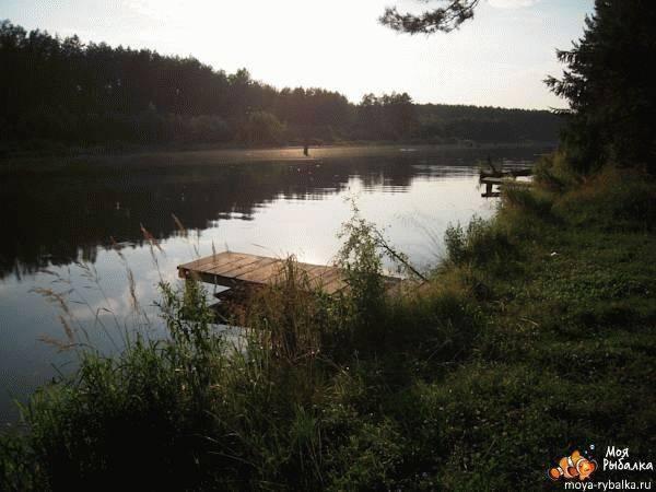 Рыбалка в брянске, брянской области. реки, озера, водохранилища, базы, видео