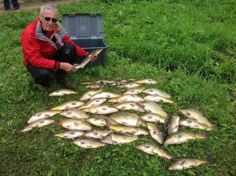 Рыбалка в красногорске: лучшие места для ловли, какая рыба водится