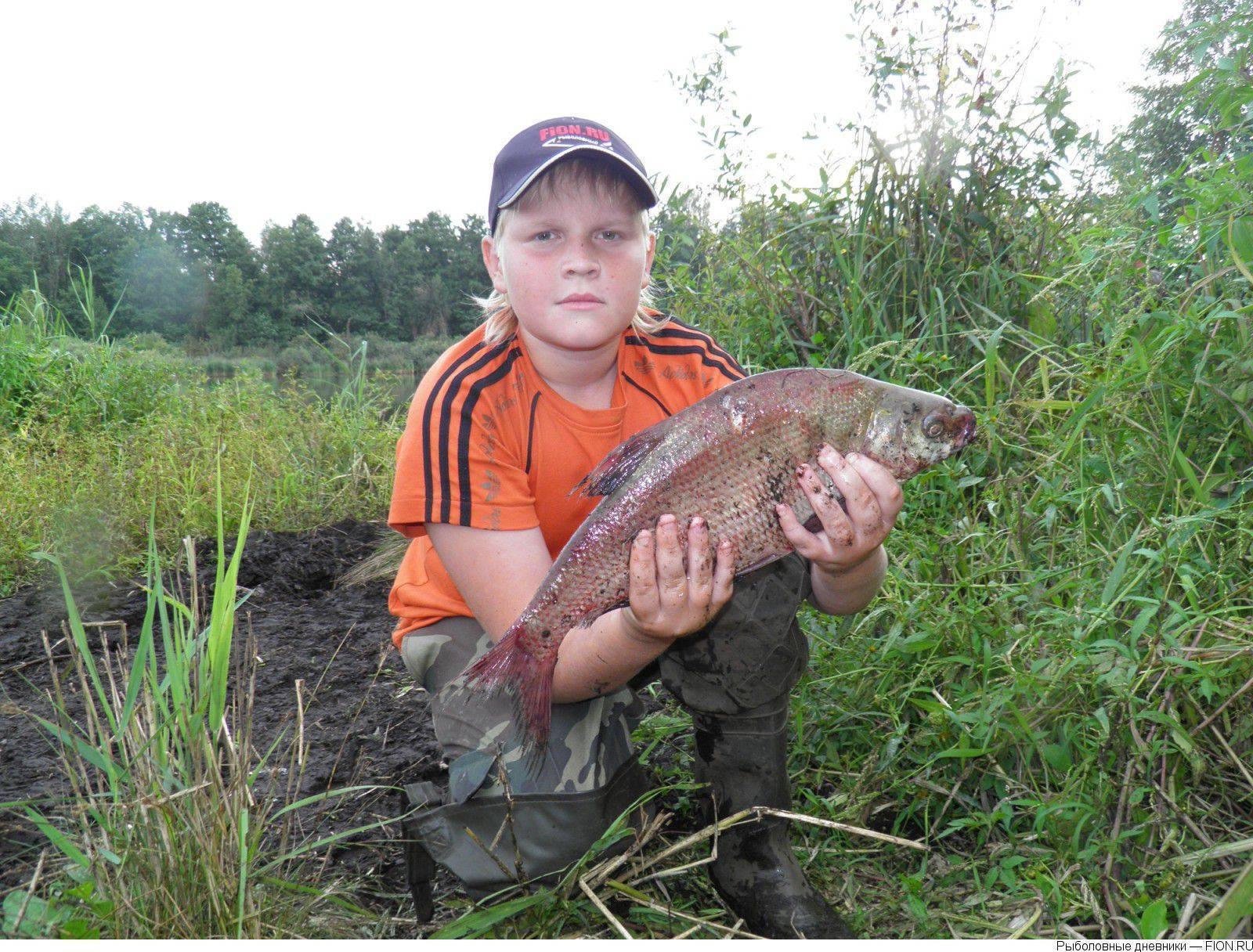Рыбалка в муромском районе. рыболовный форум и отчеты