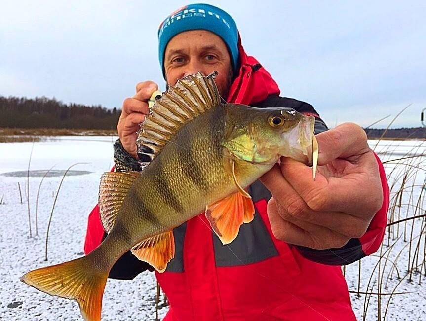 10 лучших групп о рыбалке вконтакте
