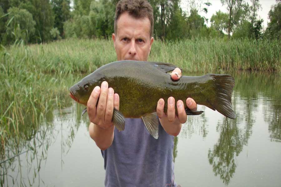 Firstfisher.ru – интернет-журнал о рыбалке и рыболовах.  ловим линя на поплавочную удочку