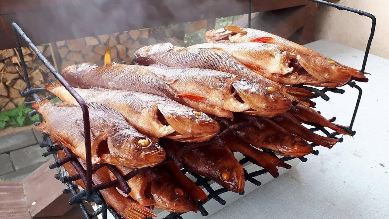 Копчение курицы в коптильне горячего копчения: пошаговые рецепты с фото