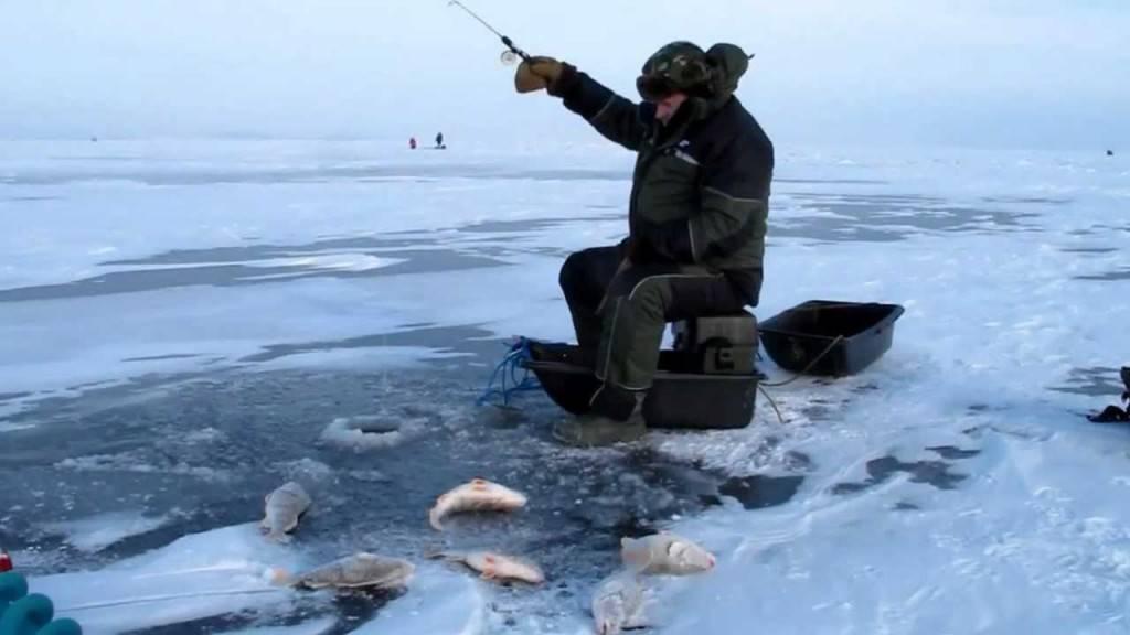 Помощь начинающему рыболову: хитрости рыбалки, подсказки новичкам