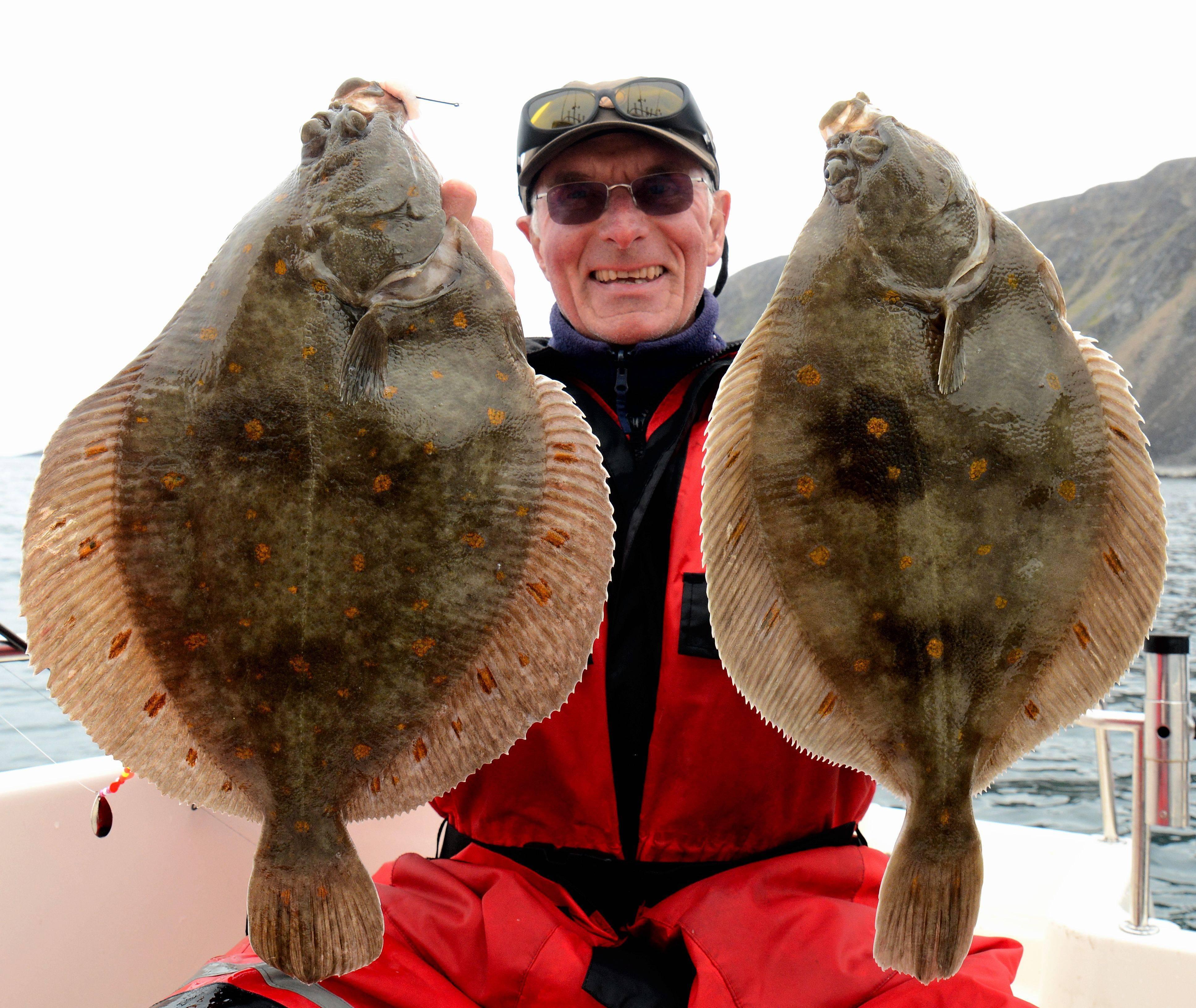 Рыба палтус: описание, фото, польза и вред
