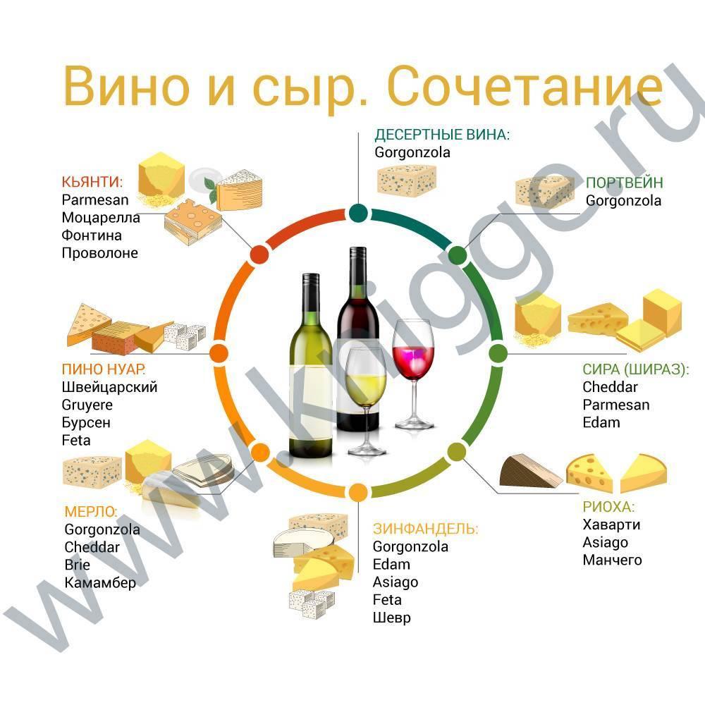 Вино к рыбе и рыбным блюдам