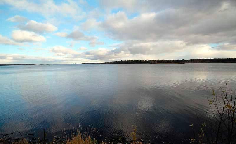 Рыбалка в челябинске и челябинской области: где ловить, на что лучше клюет