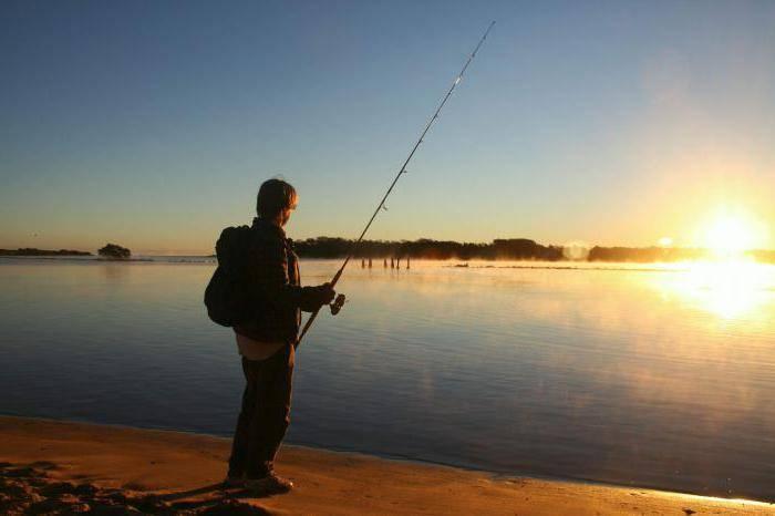 Рыбалка в могилеве и могилевской области